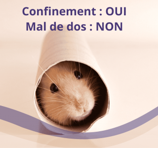 confinement et mal de dos etiopathe paris montrouge